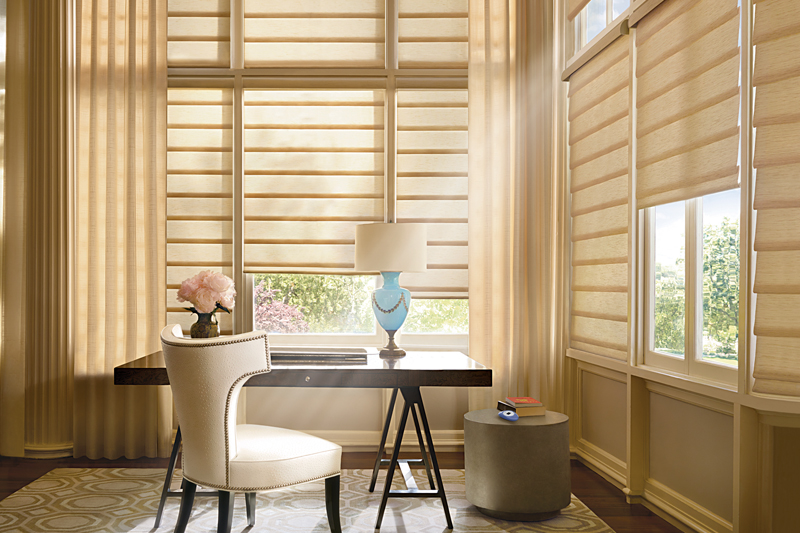 Smart Home Automation Blinds